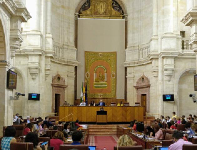 imagen del Parlamento de Andalucía en la sesión plenaria de aprobación de la ley contra la violencia de género